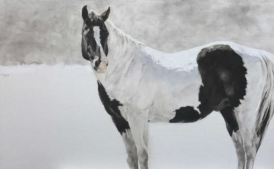 Jackson, Wy Oil Painter September Vhay - CASHMERE