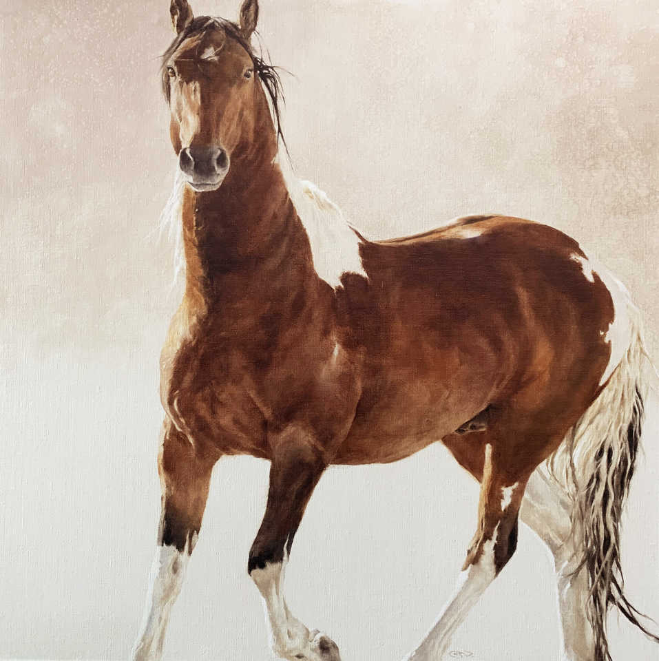 Jackson, Wy Oil Painter September Vhay - DEER RUN TOBIANO THREE