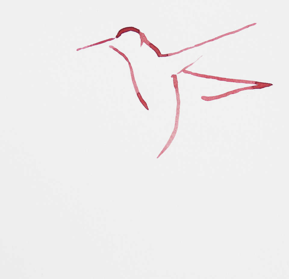 September Vhay Painter RED HUMMINGBIRD 1