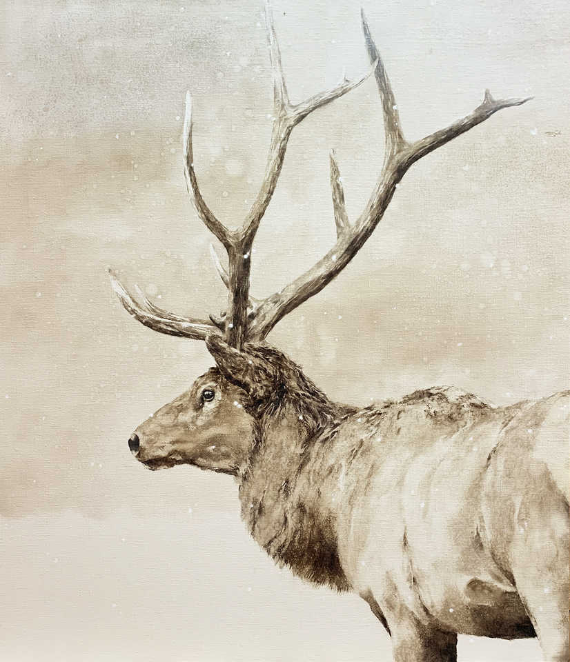 Jackson, Wy Oil Painter September Vhay - WAPITI WONDER