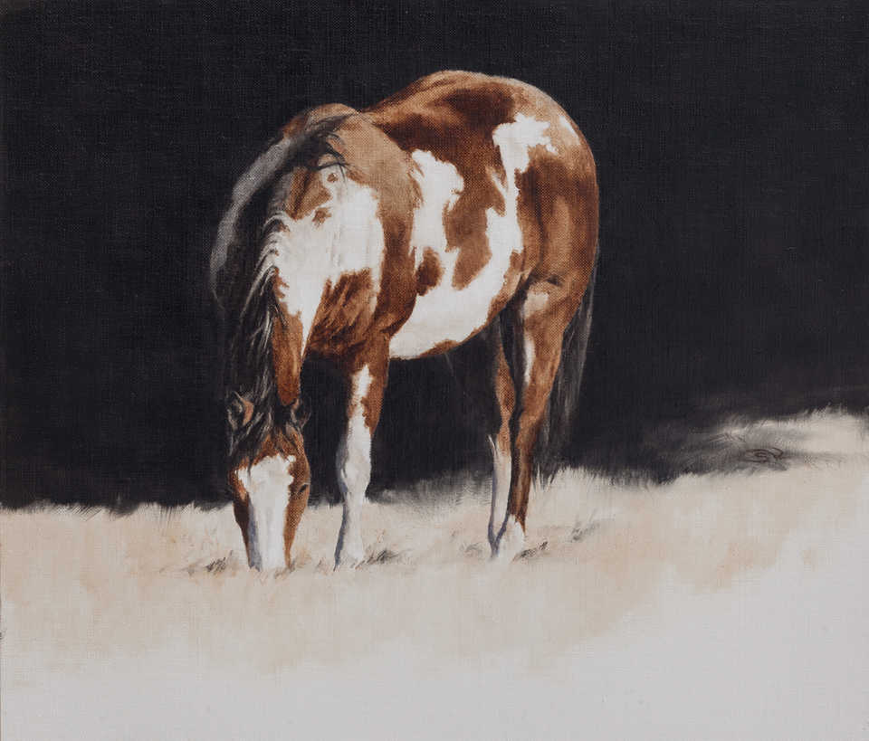 Jackson, Wy Oil Painter September Vhay - white soul watch